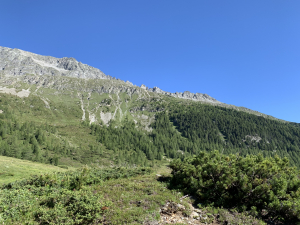 Sommer im Defereggental - Oberweissen Hittl